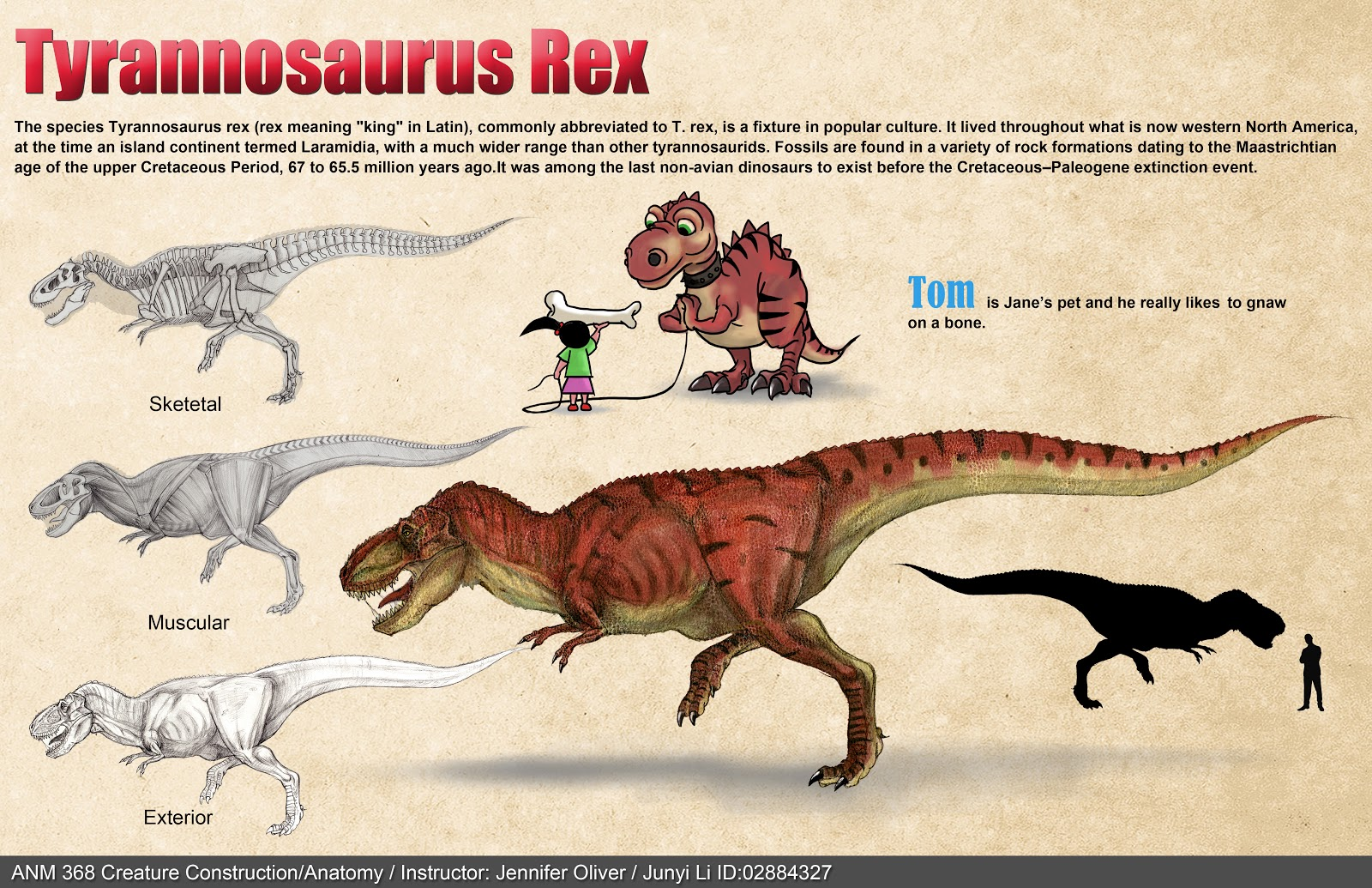 Junyi Li\'s Eyes: My first action figure - T Rex