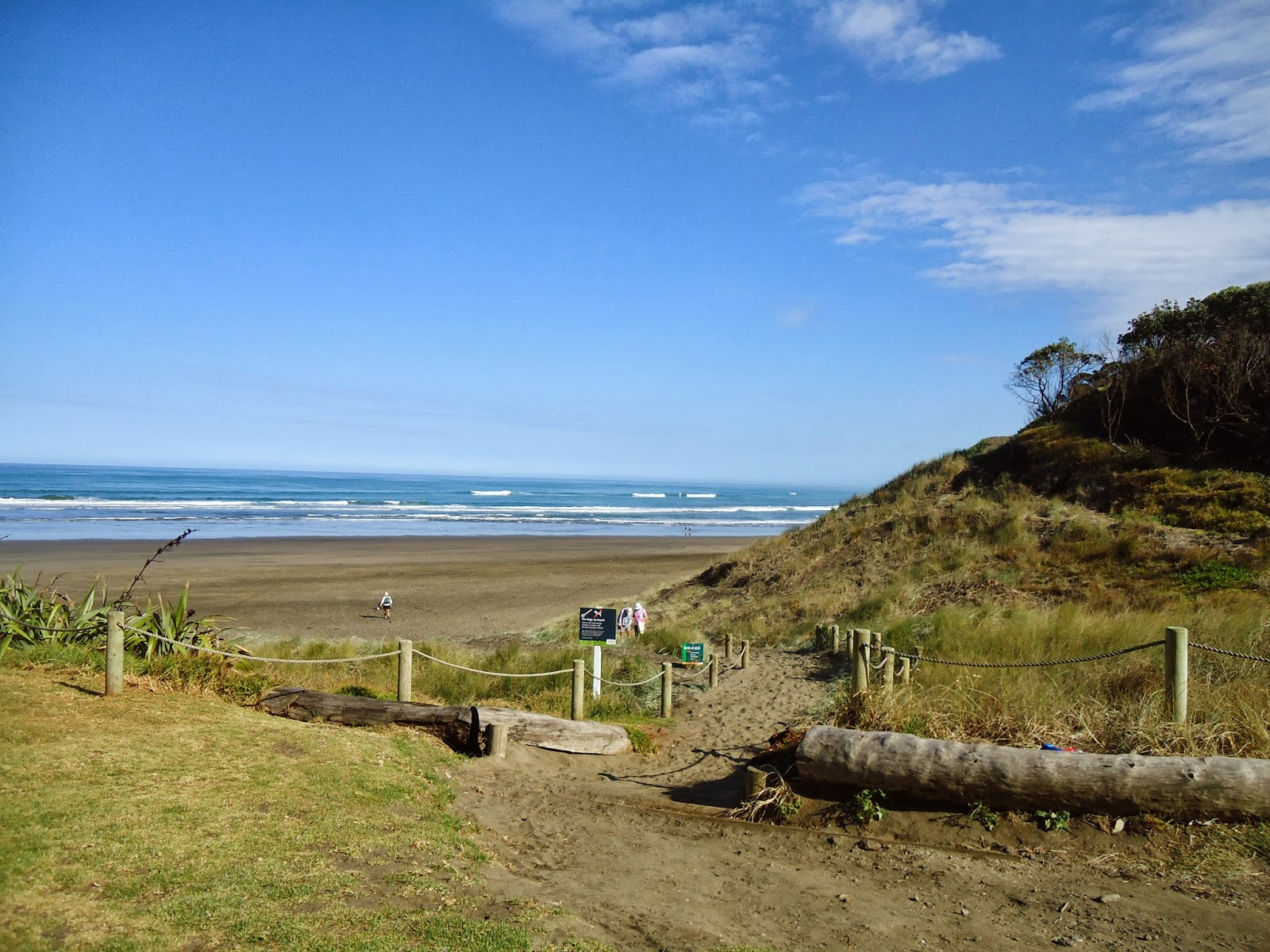 Muriwai beach, Auckland, New Zealand