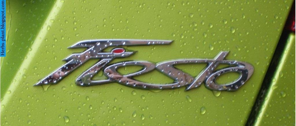 Ford fiesta car 2013 logo - صور شعار سيارة فورد فيستا 2013