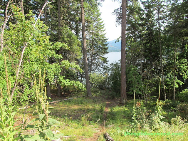 Outlet Campgrounds At Priest Lake, Idaho: Empty Spot