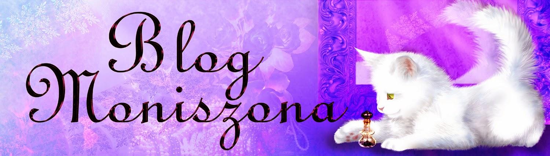 Blog Moniszona
