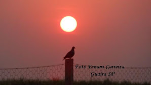 Por do Sol - Foto Ernani Carreira Guaira SP