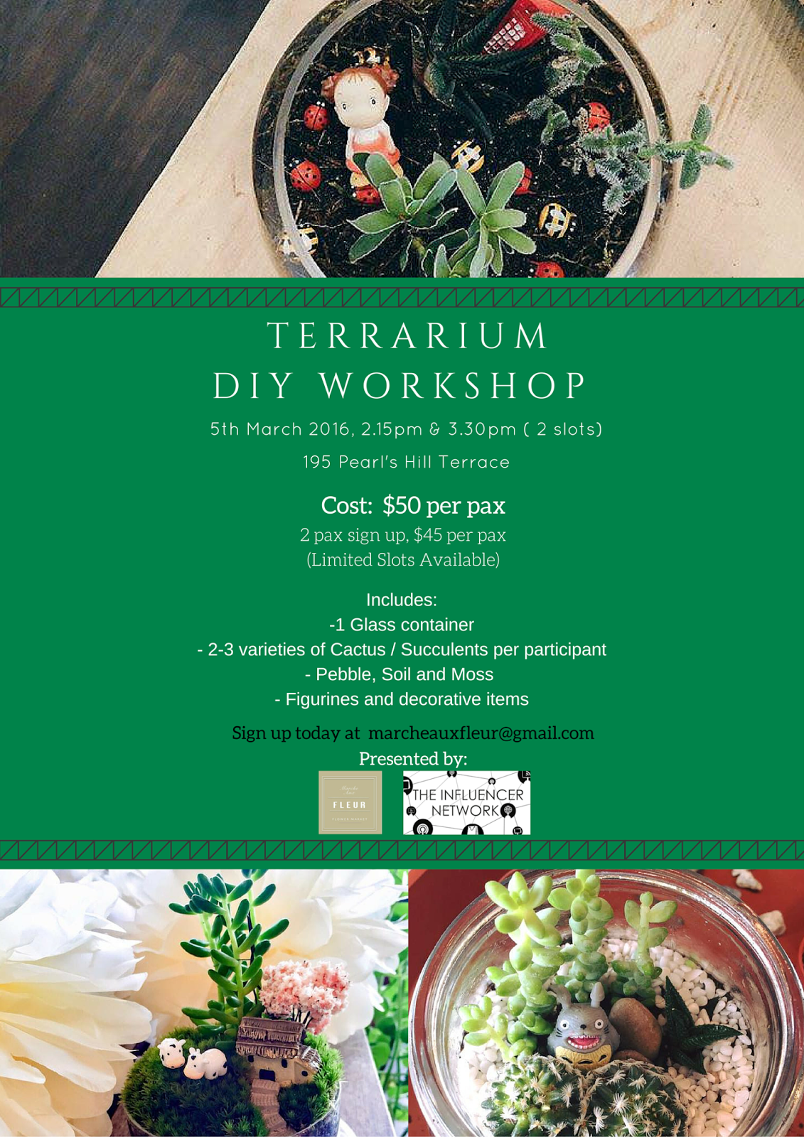 Sign up for the terrarium diy workshop today onlywilliam for 195 pearl s hill terrace