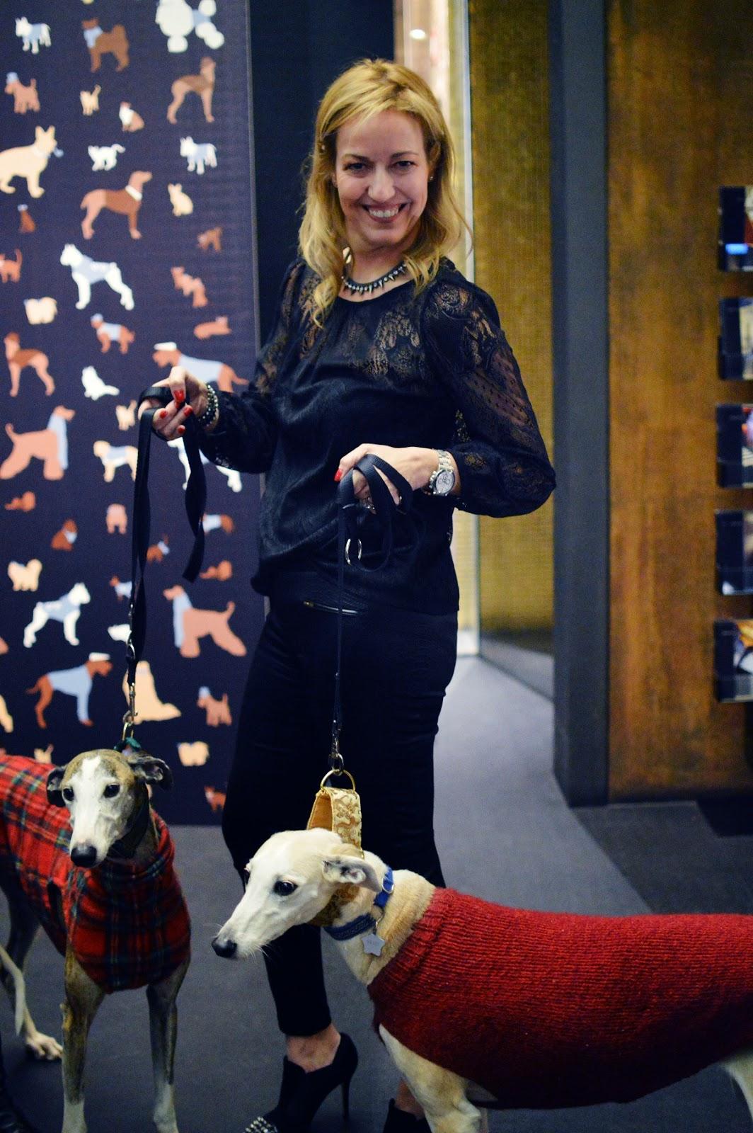 Pets Party, Hotel Urban, Sogues Comunicación, Galgos 112, Mascotas, Moda, Gourmet, Party, Fiesta con Mascotas, Blog de Moda