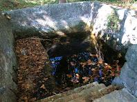 La font de Navarons inundada