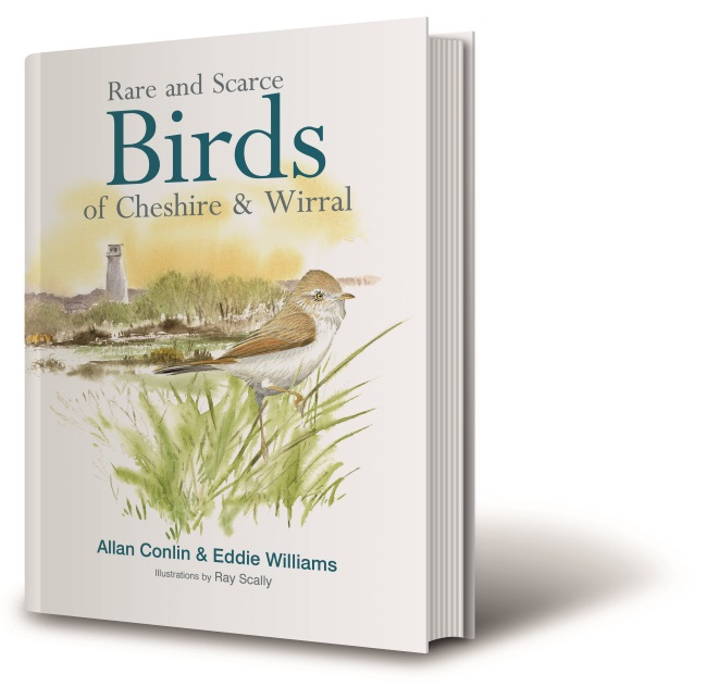 RARE & SCARCE BIRDS OF CHESHIRE AND WIRRAL