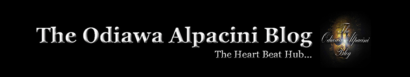 The Odiawa Alpacini Blog