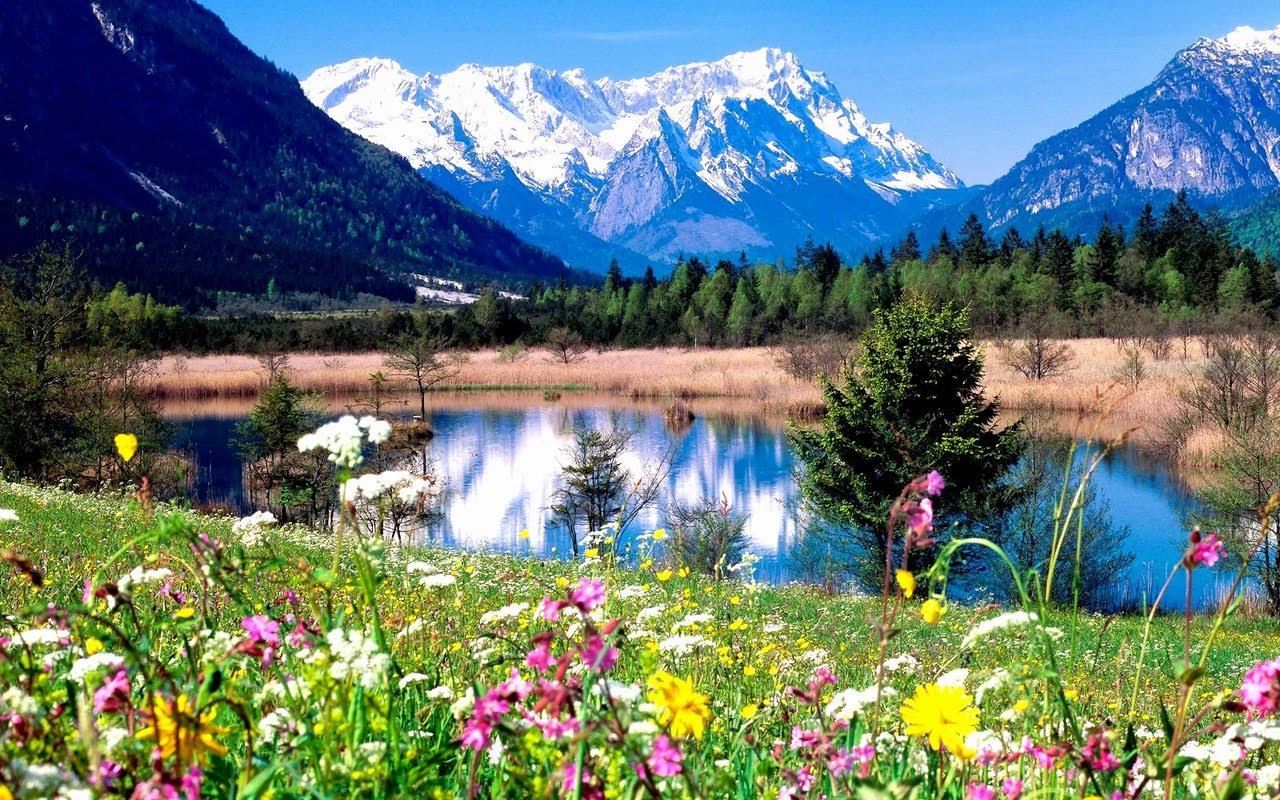 http://4.bp.blogspot.com/-Il0Cm79NAKs/TVg4b6zeh4I/AAAAAAAADTY/AkGOQpKr_CA/s1600/peisaje_de_primavara_la_munte.jpg