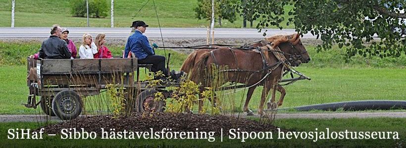 SiHaf – Sibbo hästavelsförening rf / Sipoon hevosjalostusseura ry