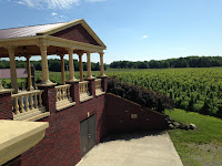 South River Vineyard, back patio view