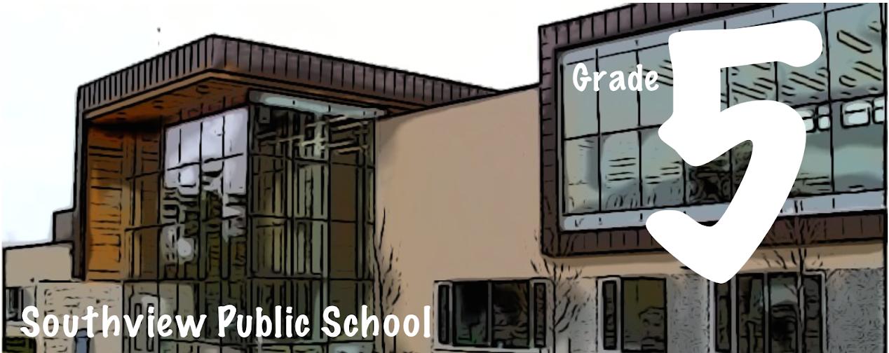 Grade 5 at Southview PS.