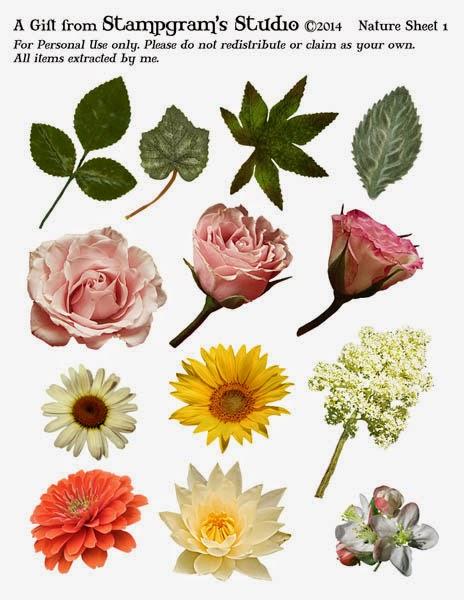 http://4.bp.blogspot.com/-IlMYS889xdM/U0CqIAwNV9I/AAAAAAAAIvA/QKzNAnPwaFs/s1600/Nature+sheet+Apr14+prev.jpg