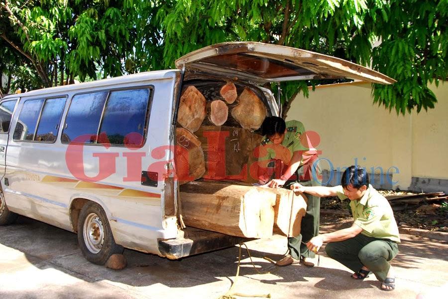 Gia Lai: Bắt giữ xe ô tô chở gỗ lậu