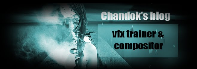 VFX Trainer&Compositor