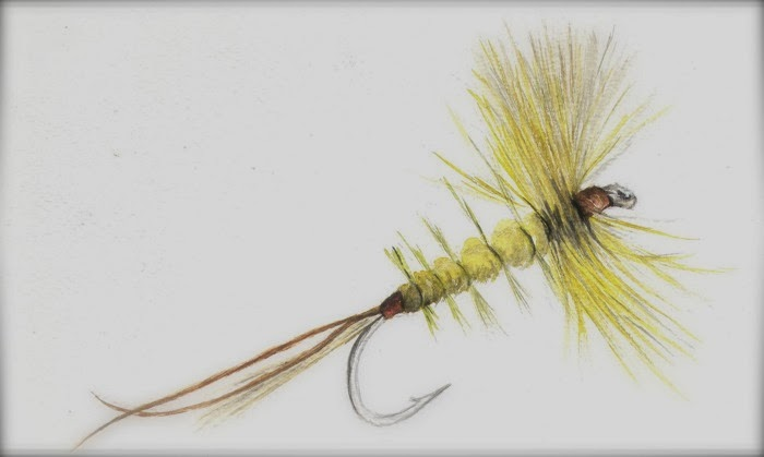 fly fishing drawing - photo #46