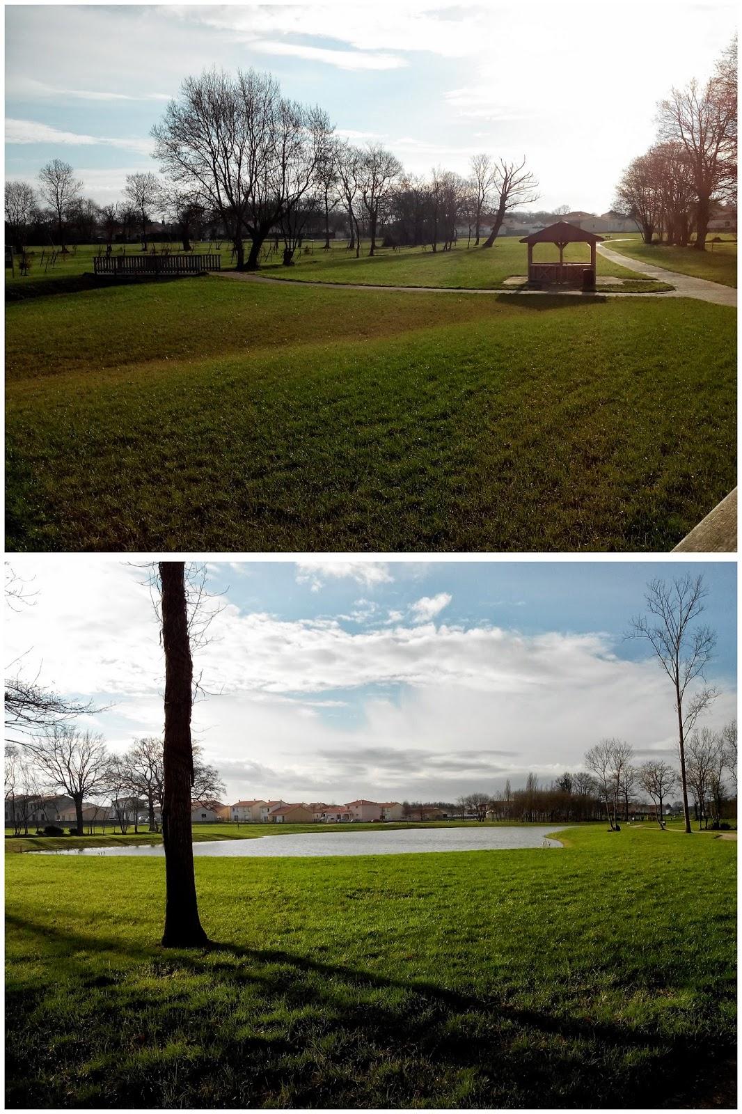 parc, lac, bullelodie