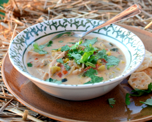 White Chicken Chili ♥ KitchenParade.com, a spicy-but-not-too-spicy concoction of chicken, spices, chilies and white beans, so good on a chilly night!