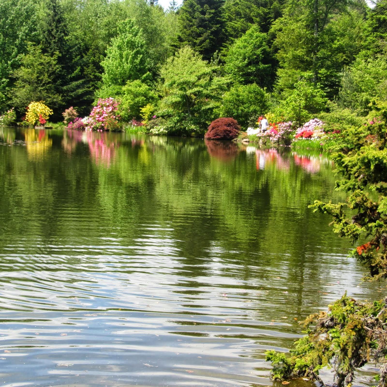 Mjeanclaude le jardin botanique de gondremer 17 mai for Jardin botanique decembre 2015