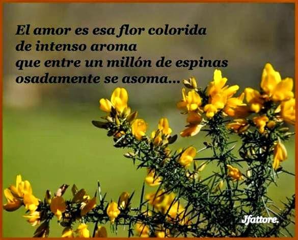 De amor...