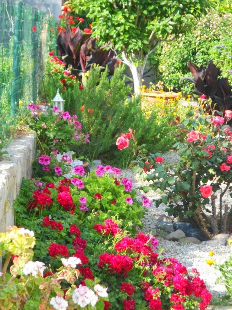 My Turkish garden