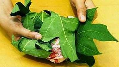 daun pepaya bungkus daging