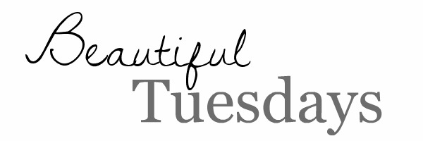 Beautiful Tuesdays