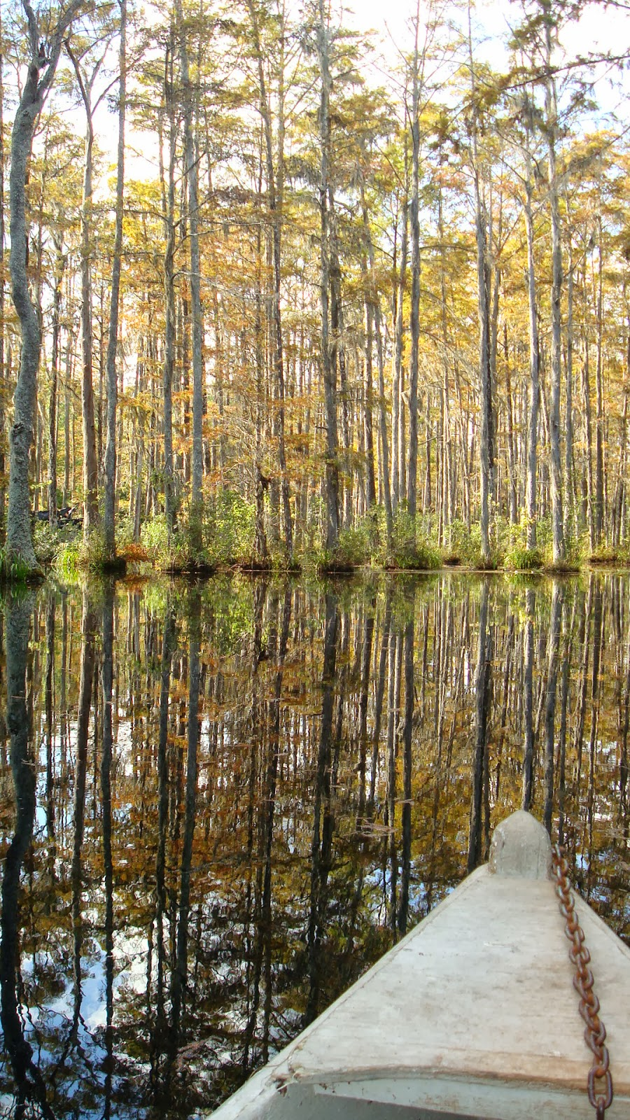 Eas-On Down The Road: # 39 Cypress Gardens, SC