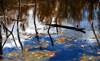 Imágenes del Agua, H2O, Water , L'eau
