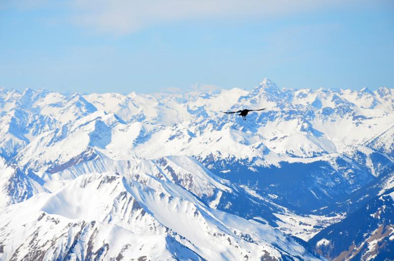 skijump from garmish