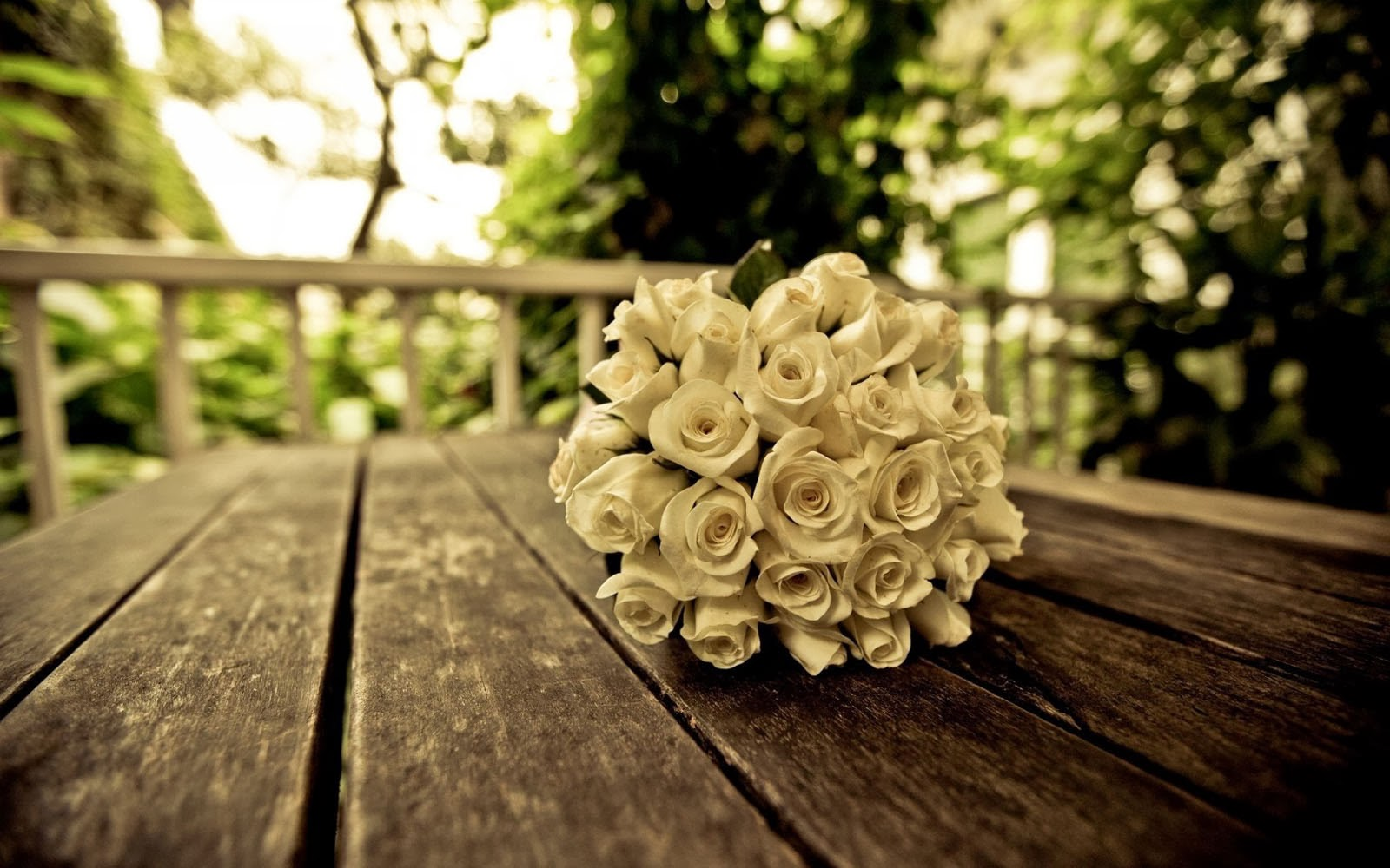 white rose bouquet wallpapers best wallpaper