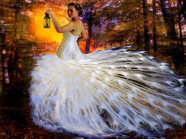 Autumn Bride1