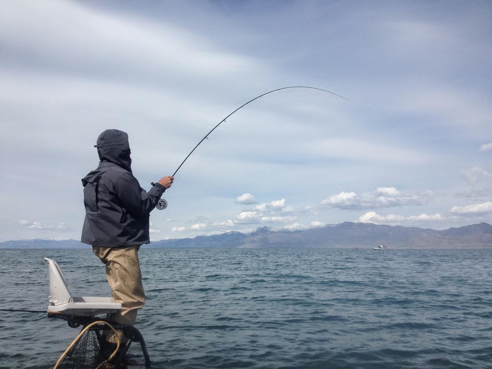 Northern sierra fly fishing pyramid lake report 4 7 14 for Pyramid lake fishing report
