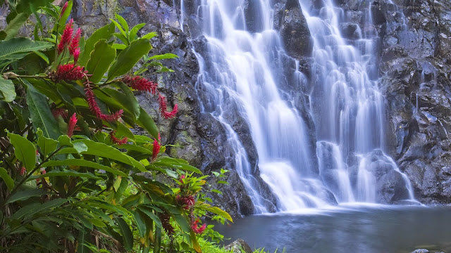 Amazing Waterfall Nature HD Wallpaper