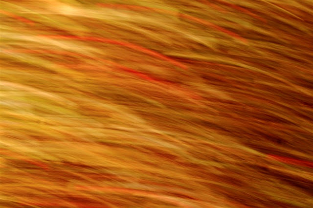 motion photography with very bright orange and red colours