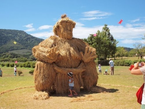 14-Sumo-Wrestling-Japanese-Rice-Farmers-