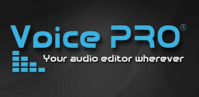 Voice PRO 2.9.4