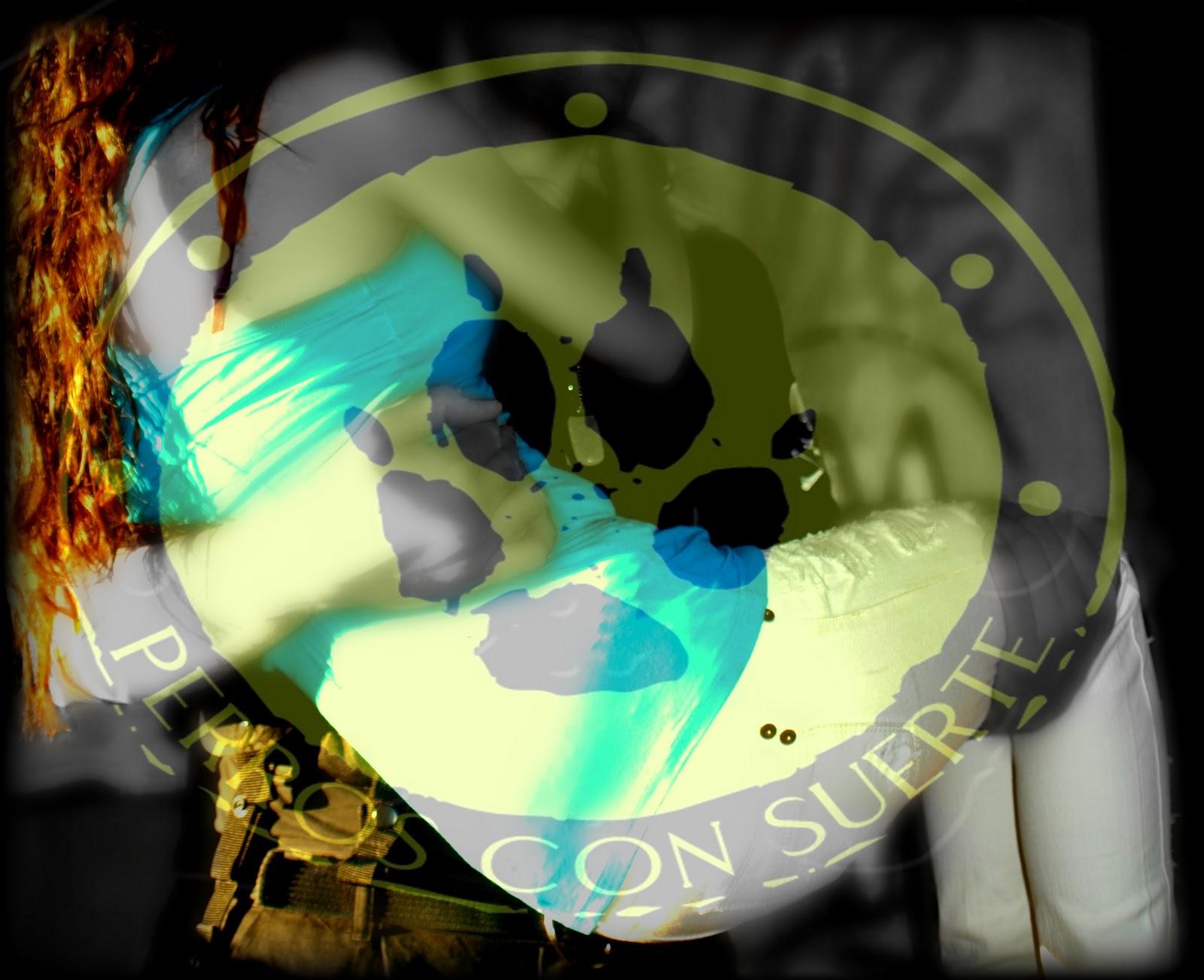 http://4.bp.blogspot.com/-Io4mqUAPiv0/TtgvcjSjBkI/AAAAAAAAGYU/ZM2KPYSG4jw/s1600/cats99.jpg