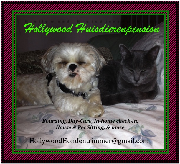 Hollywood Honden Services