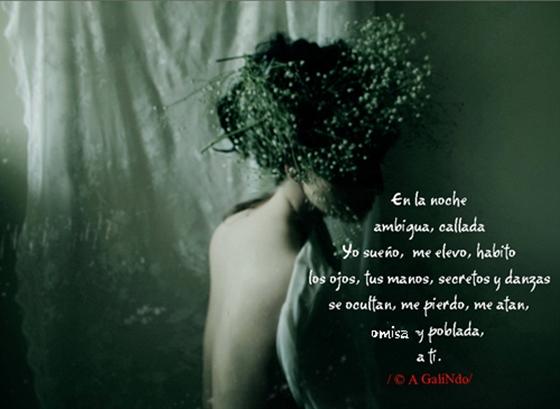 La CasA de La LluviA: Noche / Poema-Diamante /