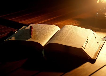 Biblia en linea. (Biblia Paralela)