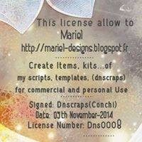 DNS Scraps License