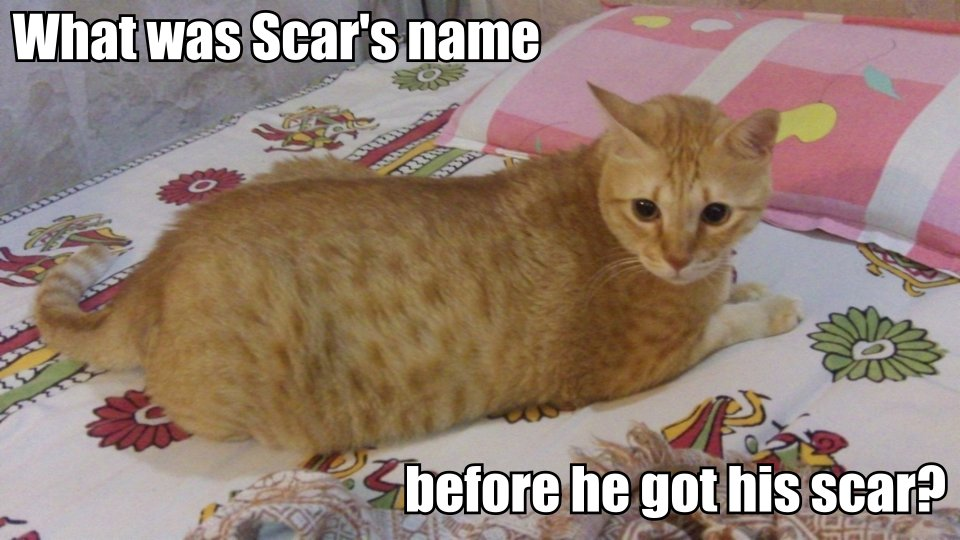 What was Scar's name before he got his scar?