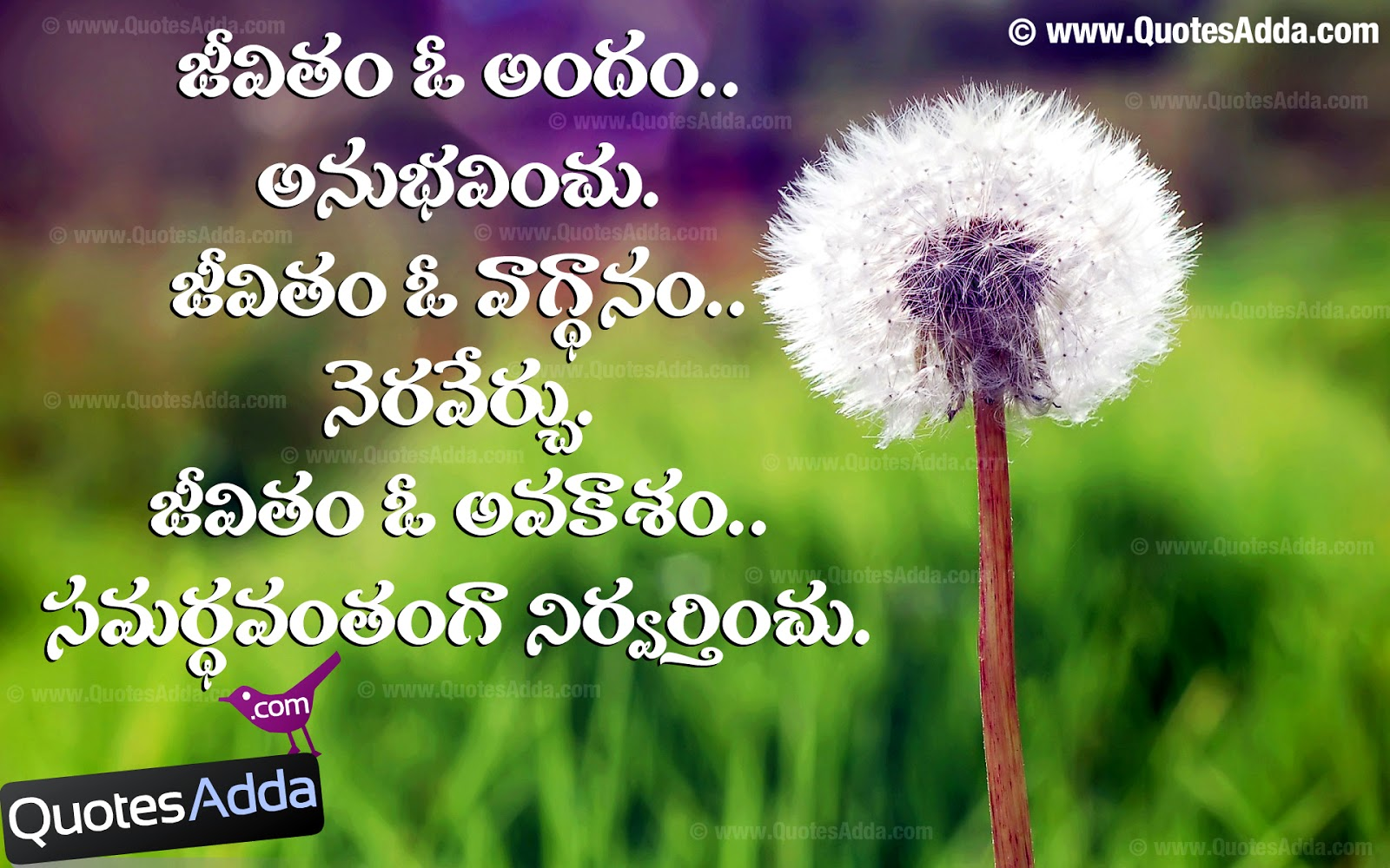 search results for kannada quotes calendar 2015