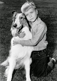 Jon Provost interview!