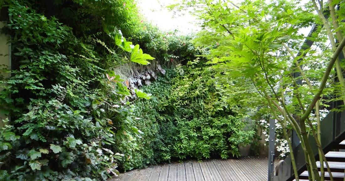 Paradis express les jardins de babylone - Mur vegetal exterieur ...