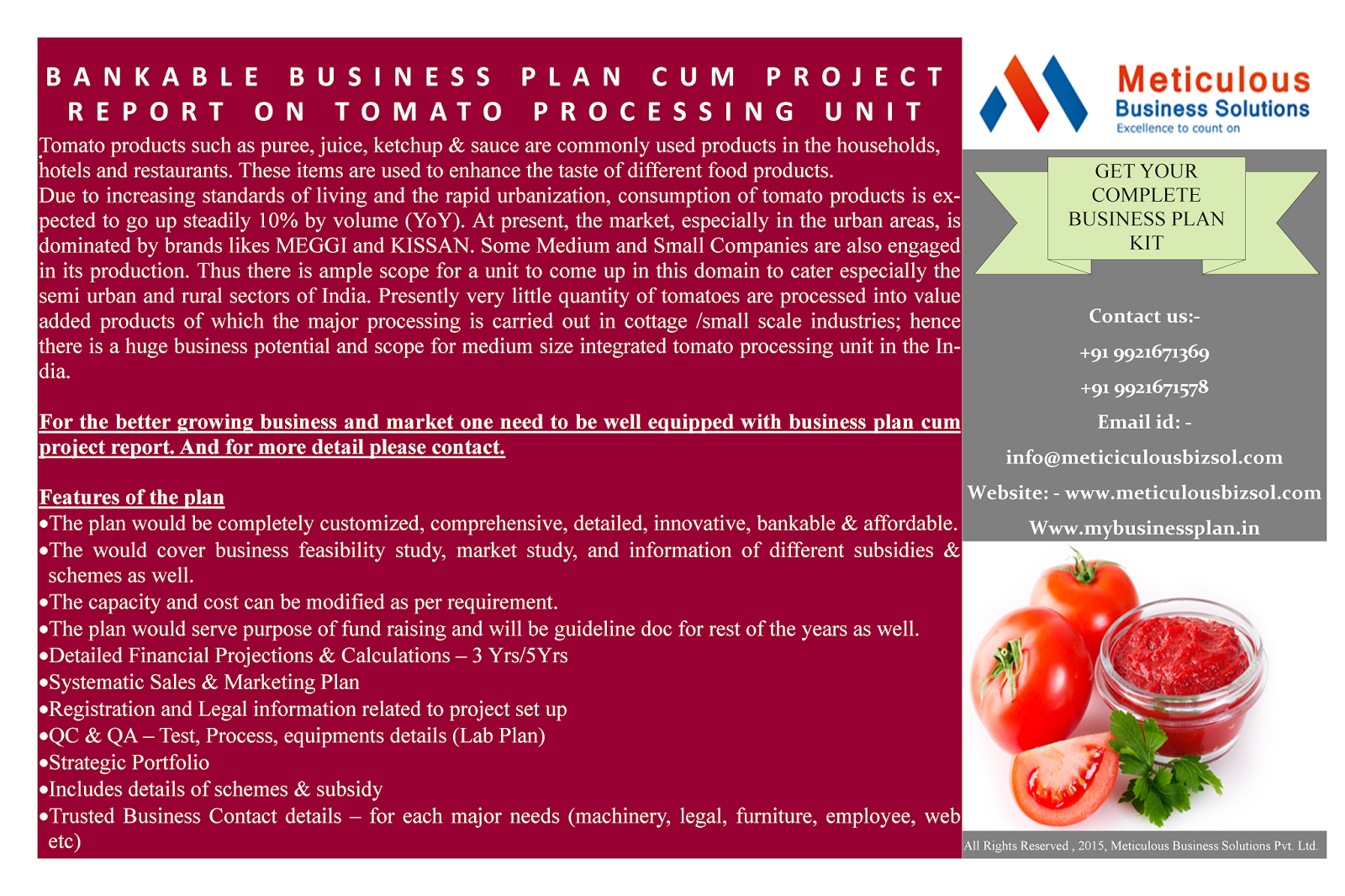 Tomato Farming Business Plan in Nigeria