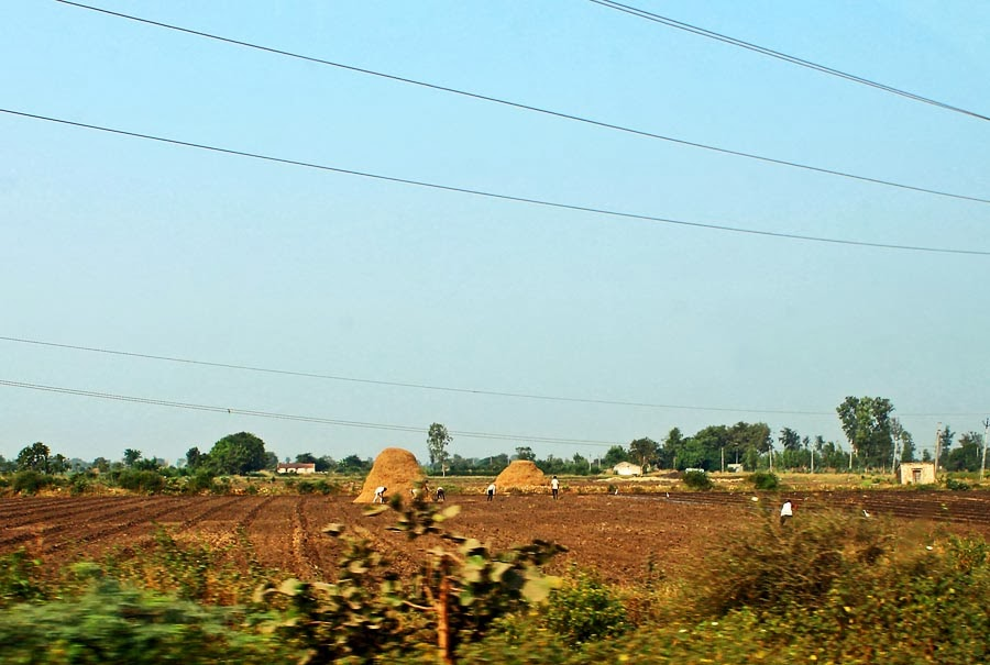 farm in Gujarat