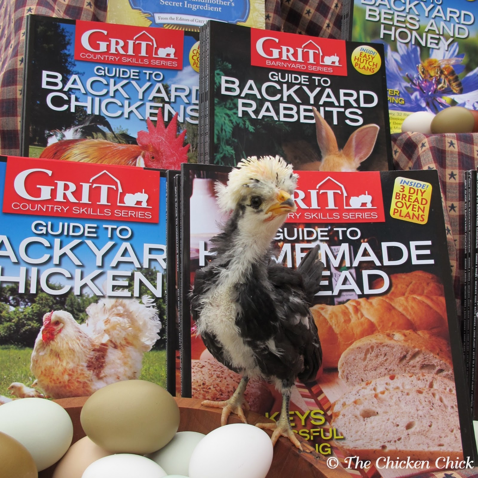 the chicken grit magazine giveaway