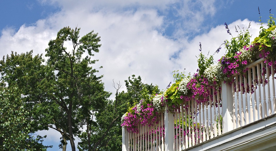 Functional and Spiced Up Balcony Container Gardening