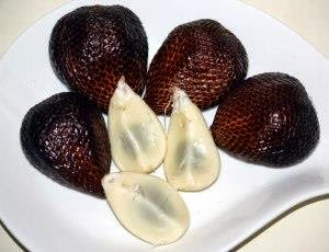manfaat buah salak, salak kaya manfaat, khasiat salak